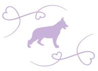 silhouette-chien-serenite-canine-6