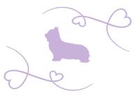 silhouette-chien-serenite-canine-7