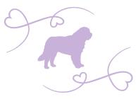 silhouette-chien-serenite-canine-8